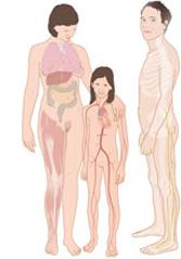 Zoeken op lichaamsdeel